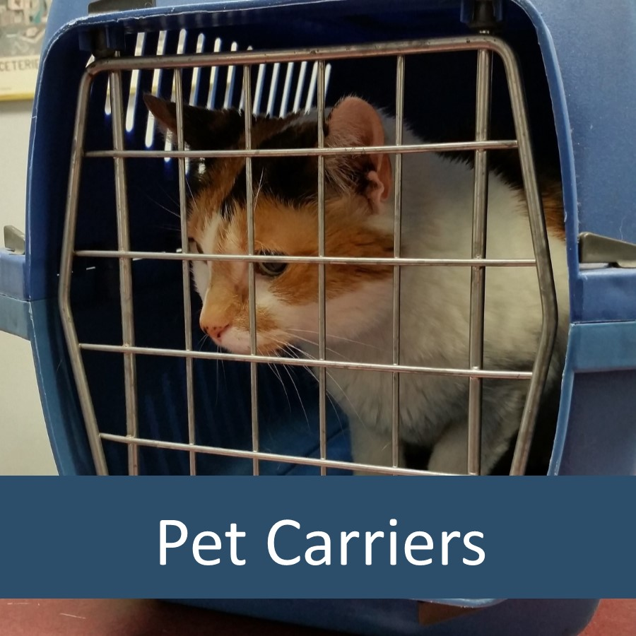 Pet Products for Elderly Cats 7