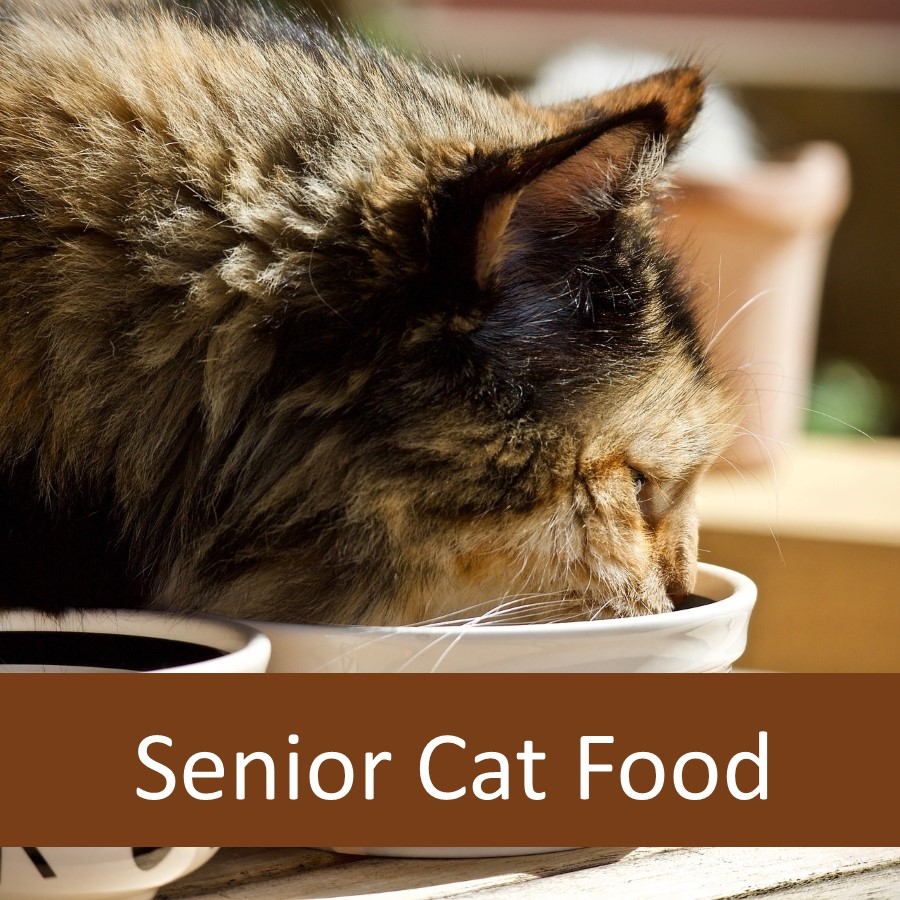 Pet Products for Elderly Cats 12
