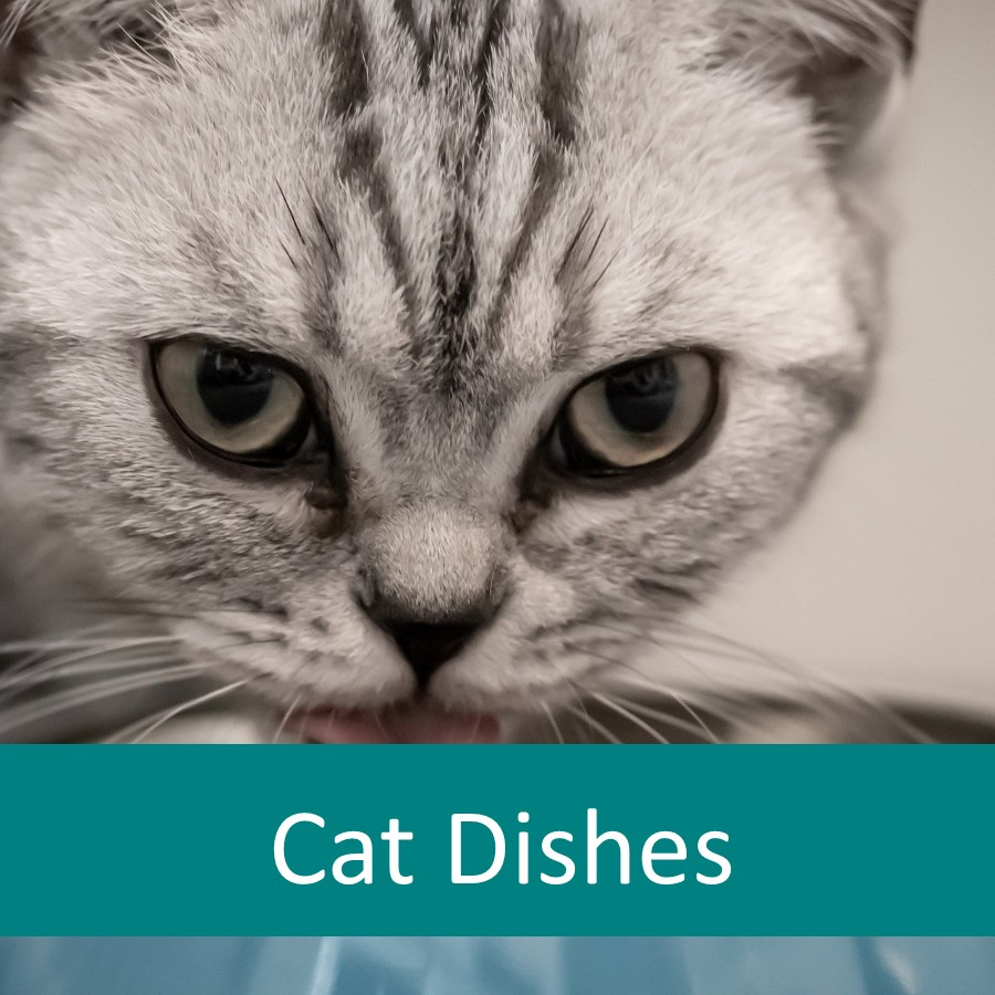 Pet Products for Elderly Cats 4