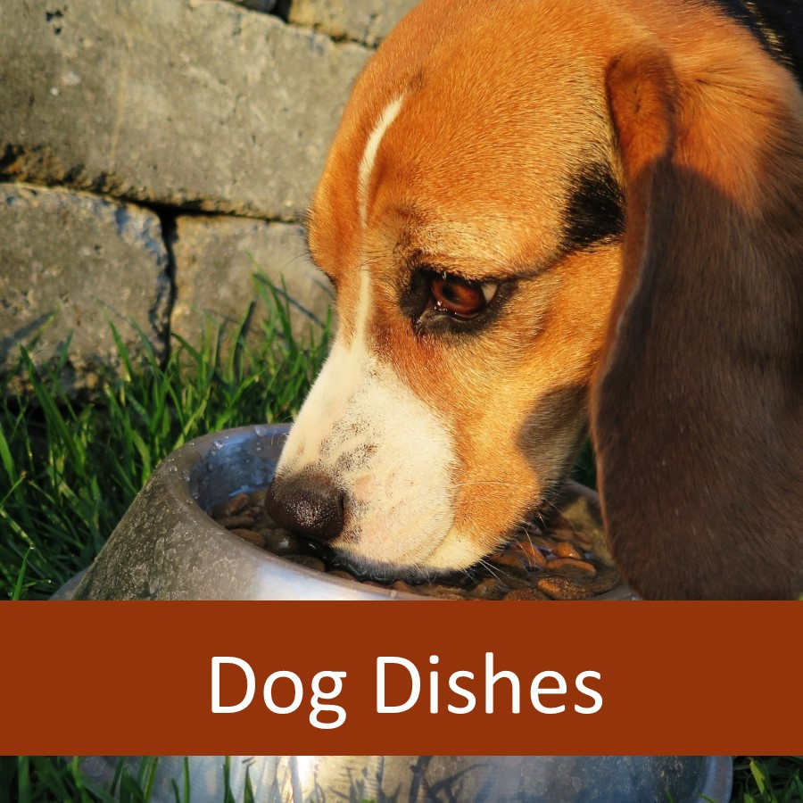 Pet Products for Elderly Dogs 7