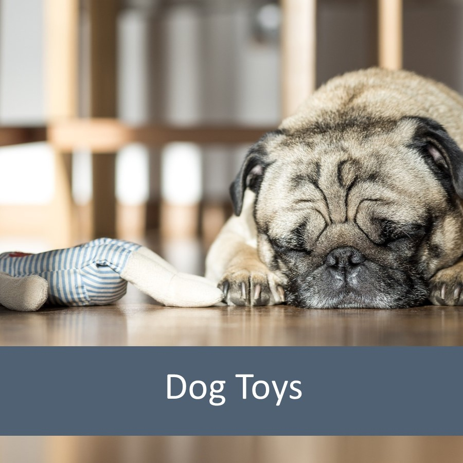 Pet Toys for Elderly Pets 2