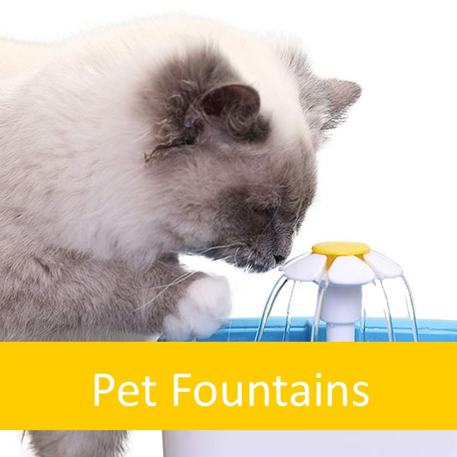Pet Products for Elderly Cats 6