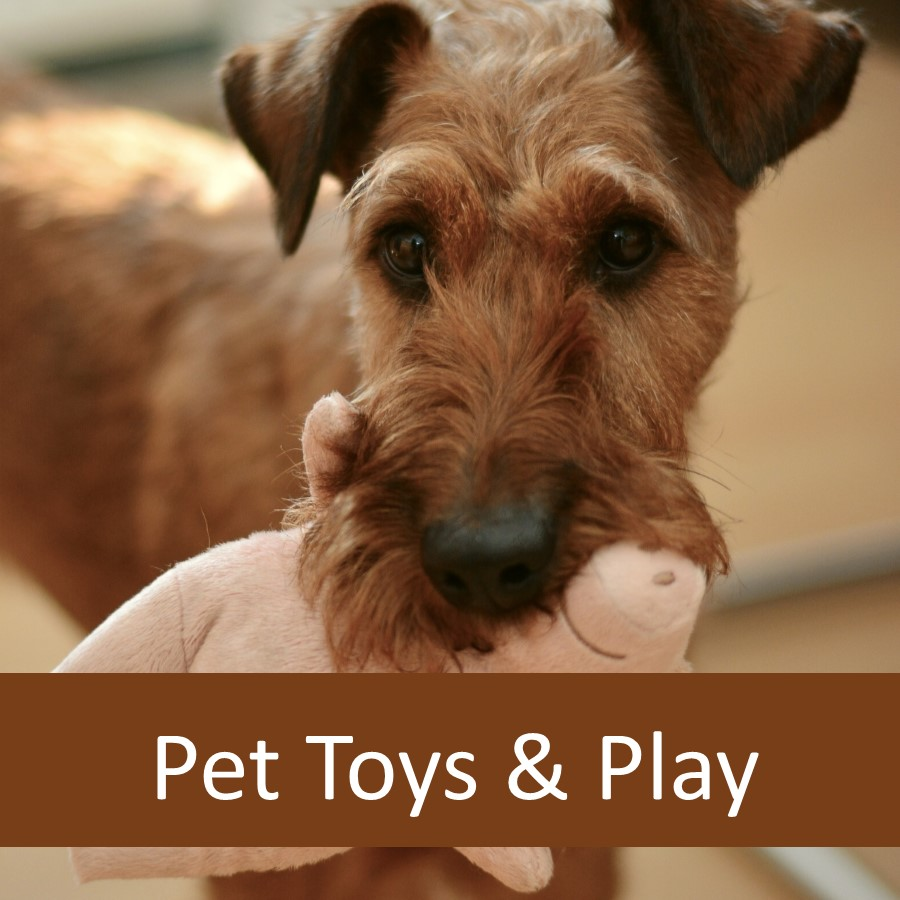 Pet Toys for Elderly Pets 1