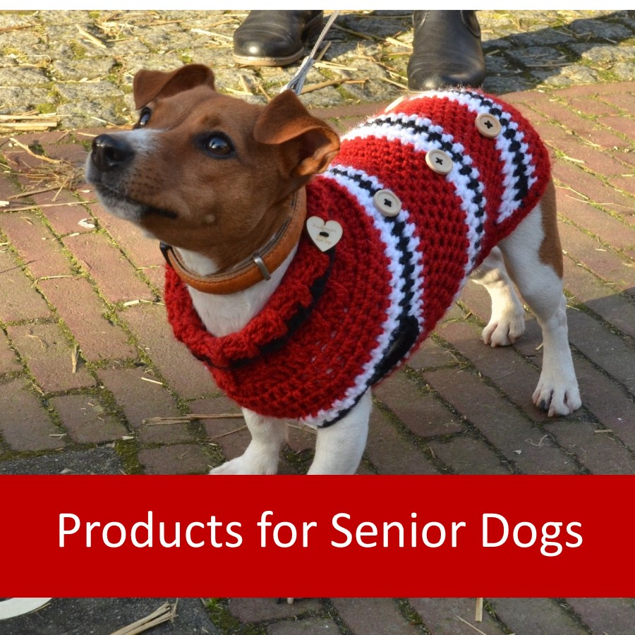 Pet Products for Elderly Dogs 1