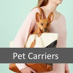 Which Pet Carrier is Best for Your Pet